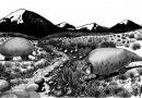 Un gliptodonte en las alturas: describen nueva especie que habitó áreas andinas
